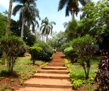 The steps down to the Nile River