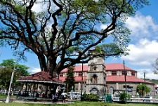 The Cathedral overlooking Derek Walcott Square, a quiet park in the middle of the city