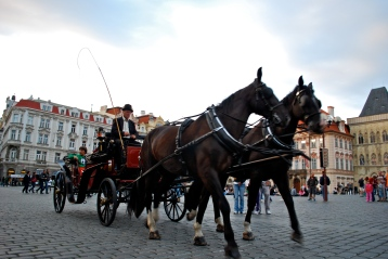 Horse drawn carriage rides around Prague
