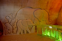 Elephants at the bar