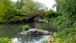 One of the beautiful ponds in Central Park