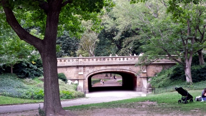One of the many beautiful bridges in Central Park