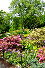 Beautiful gardens in Fort Tryon Park