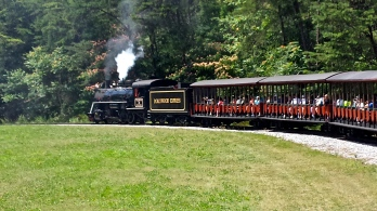 """""""All aboard the Dollywood Express!"""""""