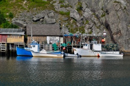 Fishing shacks in 'The Gut'