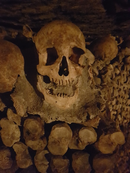 One of over a million skulls found in the Catacombs of Paris