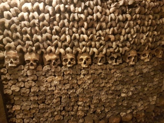 A wall of femurs and skulls