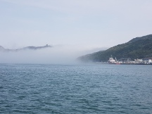 Fog at the mouth of the harbour