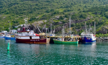 Boats in St. John's Harbour