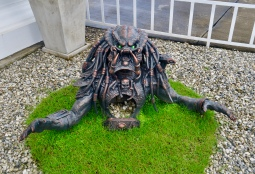 Predator lurking at the entrance