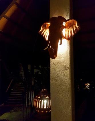 Beautiful elephant lights
