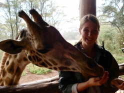 Twiga (giraffe) feeding- one of the Swahili words my kids taught me!
